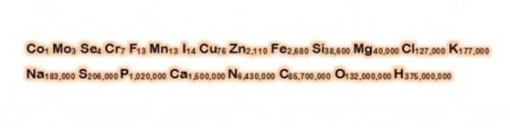 Human formula